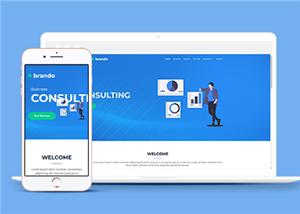 扁平化企业咨询网站模板