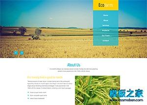 金色麦田农产品网页模板