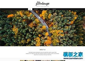 大图幻灯博客日志网站模板