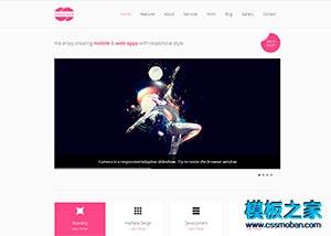 响应式VI设计公司网站整站模板