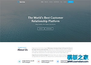 客户服务公司响应式网站模板