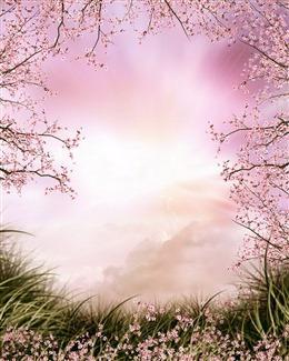 浅粉色全屏背景