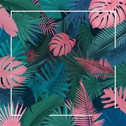 彩色热带叶子背景
