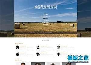 农业农副产品bootstrap模板