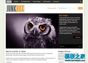 宠物鸟类网站css模板