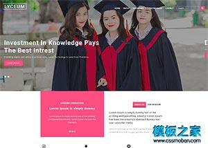 粉红色市场营销培训公司响应式模板