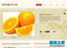 淡色水果蔬菜类网站模板