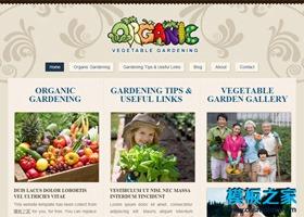 水果蔬菜网站模板