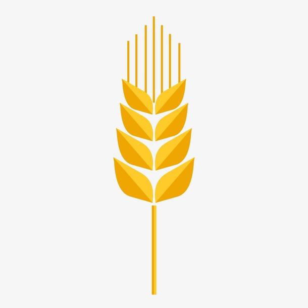 麦穗装饰元素