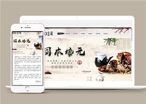 养生行业网站模板