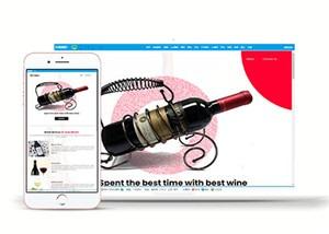 葡萄酒种类介绍网站模板