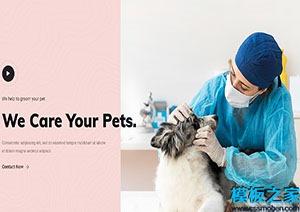 宠物护理医院html引导式网站模板