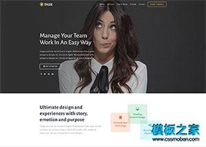 VIP付费服务管理系统网站模板