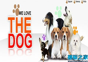 狗狗俱乐部单页网站模板