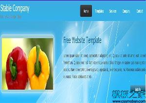 stable蓝色宽屏手机网站模板