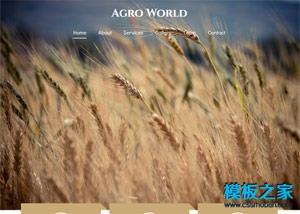 农业稻香农产品响应式网站模板