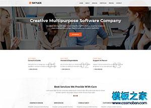 Software软件开发公司企业模板
