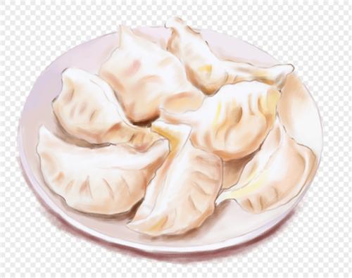 一盘饺子冬至食物