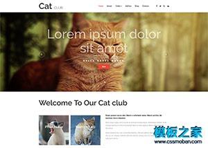 宠物医院企业官网模板