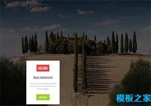 Travel旅游多页网站html模板