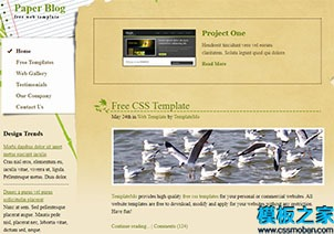 绿叶艺术品装饰网站模板