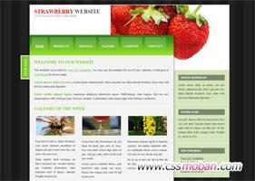 食品类企业网站模板