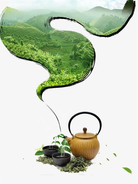 茶叶包装矢量图