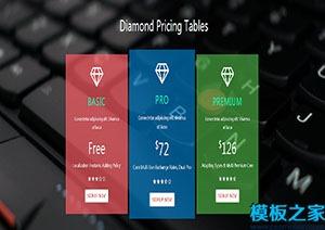 价格表单页响应式网站模板