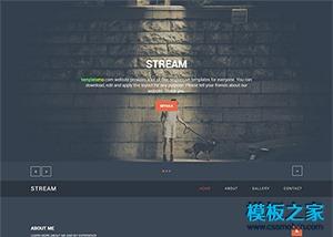 摄影博主个人网站html5模板
