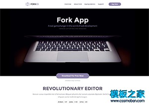 紫色响应式APP开发者软件网站模板