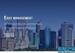 企业管理布局网站模板