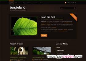 棕色web20模板