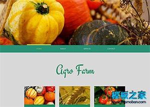 农业蔬菜水果网站模板