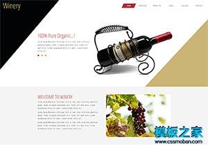 红酒专卖店宽屏设计公司网页模板