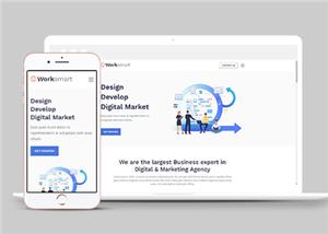 网络应用开发公司网站模板