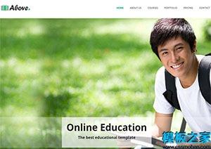 简约教育机构网站模板
