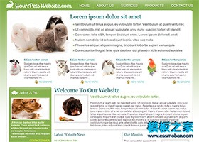 宠物世界网站模板