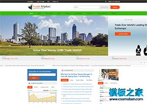 财经证券新闻门户网站模板