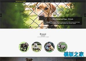 宠物乐园html单页网站模板