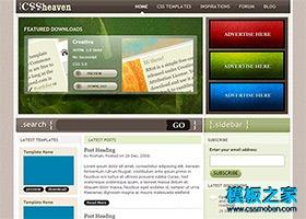 绿色幻灯片设计师博客模板