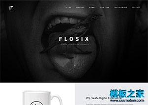 VI设计公司企业响应式官网