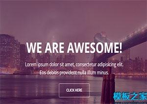 高质量单页网站模板