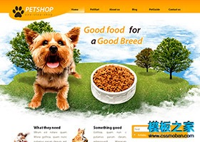 狗狗商城企业CSS模板