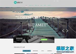平面ui设计师主页模板