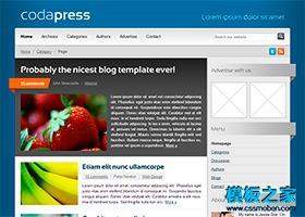 企业博客网站模板