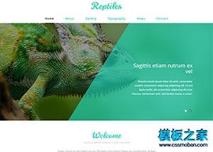 动物类html网站模板