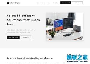 software软件开发公司网站模板