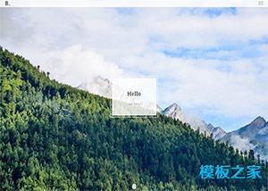 设计师主页web网站模板