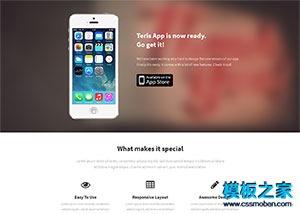 app产品开发html单页网站模板