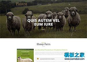 动物园饲养网站模板
